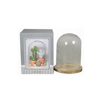 D CLOCHE VERRE D15 H24 SOCLE NATUREL